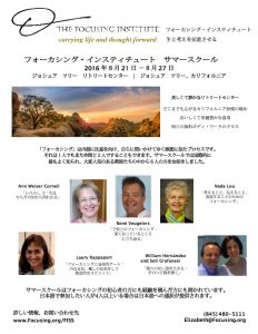 第11回TFIサマースクール日本語版ちらし